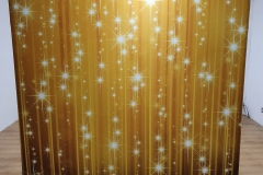 Gold Stars Backdrop