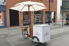 Corporate-Ice-Cream-Bike-Swarovski