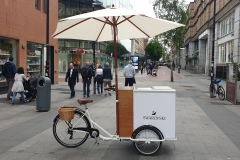 Corporate-Ice-Cream-Bike