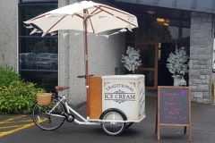 Vintage-Ice-Cream-Bike
